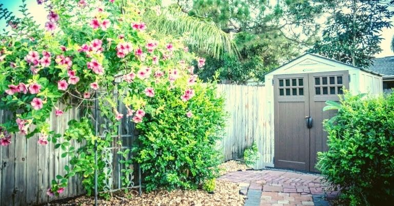 A shed in a neat back yard garden with flowers.