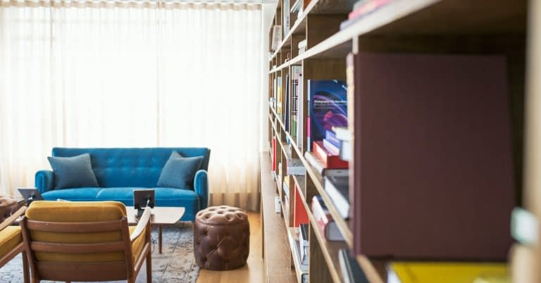 Living room with shelves with books.